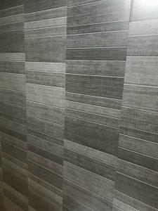 Modern Carbon Shower panels