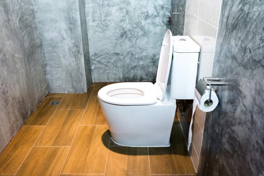 toilet for shower room