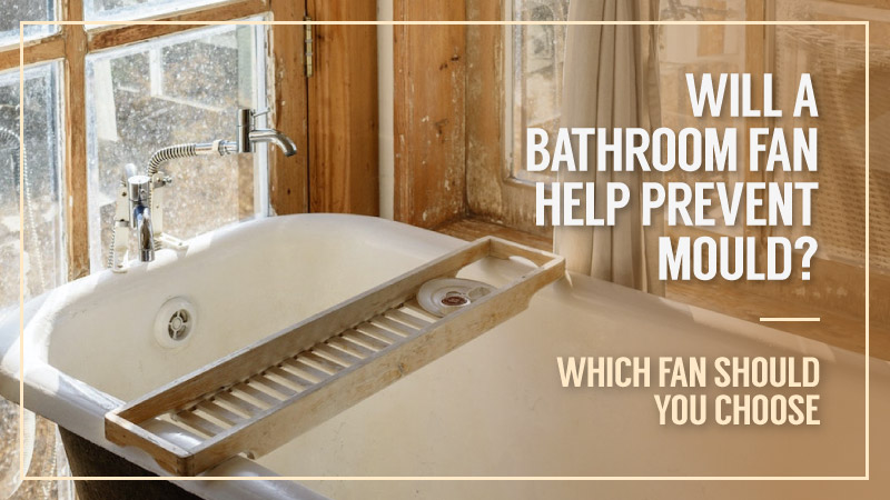 Will-A-Bathroom-Fan-Help-Prevent-Mould-Which-Fan-Should-You-Choose